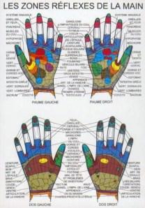 Les zones réflexes de la main reflexo-palmaire
